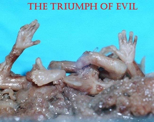 All That Is Necessary For The Triumph Of Evil Triumph Evil