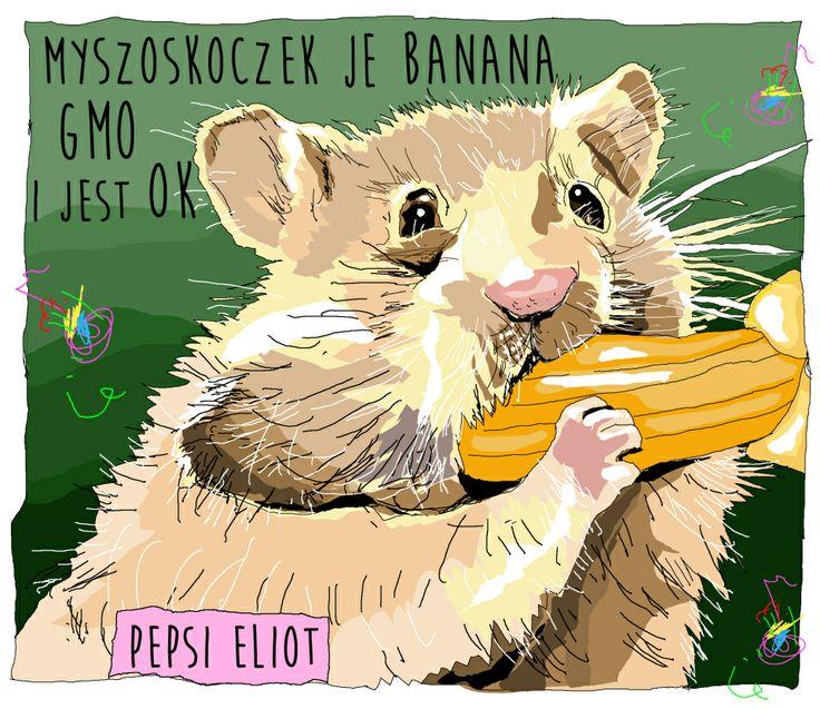 Z niecierpliwością czekamy na nowego banana GMO, Jan Ufok  #banany #GMO
