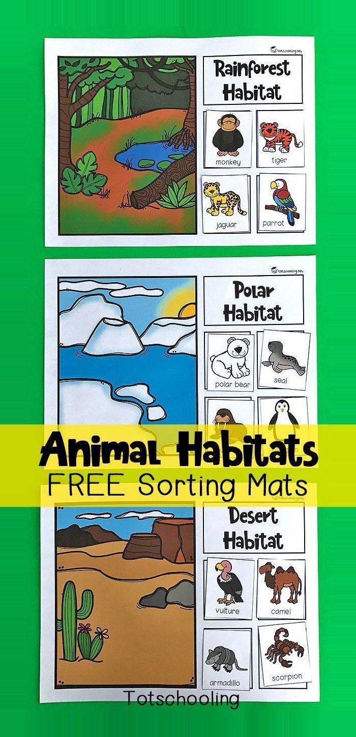 Loading Science Activities For Kids Animal Habitats Preschool Science [ 1447 x 700 Pixel ]