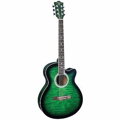 Ultimate Guitar Student Best Acoustic Electric Cheap Guitars Indiana Madison New