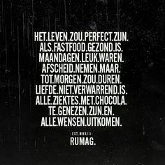 Het leven zou perfect zijn