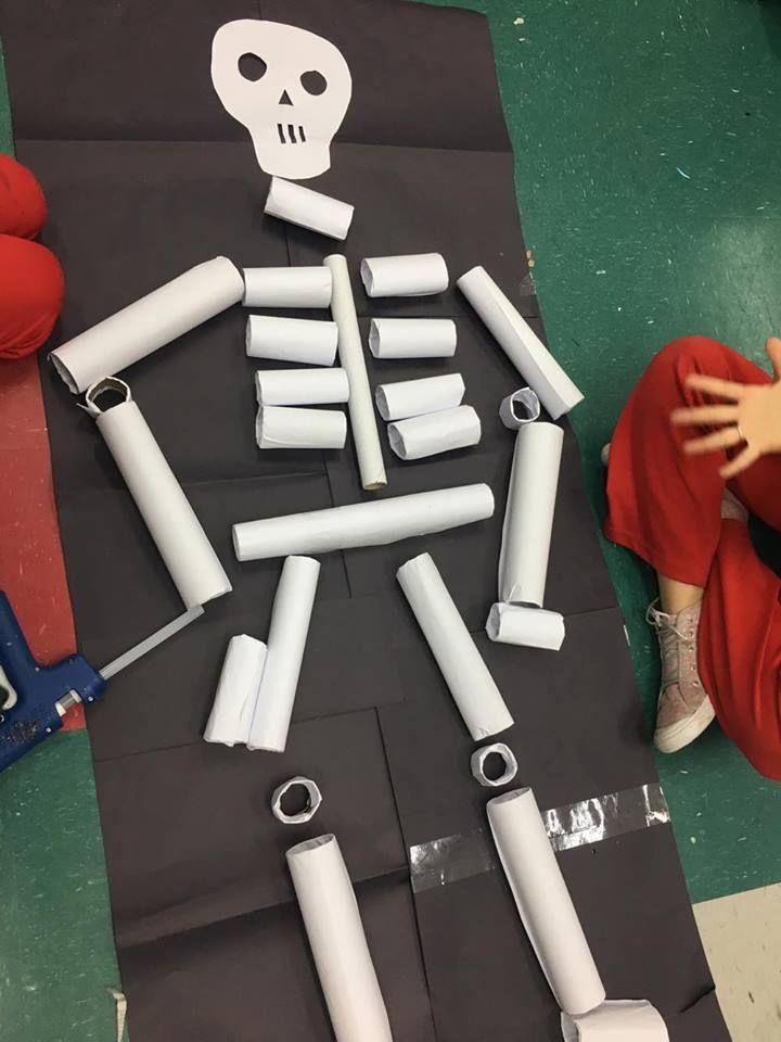 Esqueleto com rolinhos de papel esquema corporal rolo for Como criar peces para consumo humano