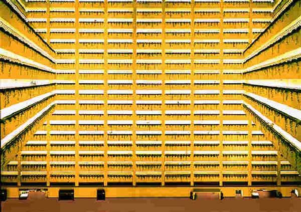 #andreasgursky