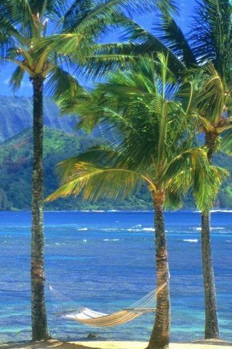 ✯ Kauai Beach