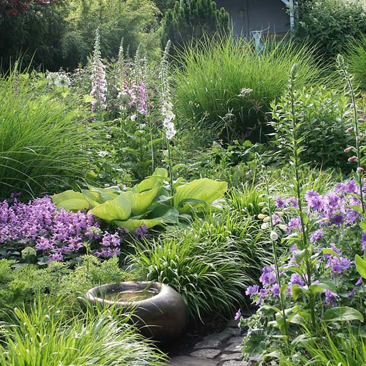 172 best ideas about grasess in the garden on for Tranquil garden designs