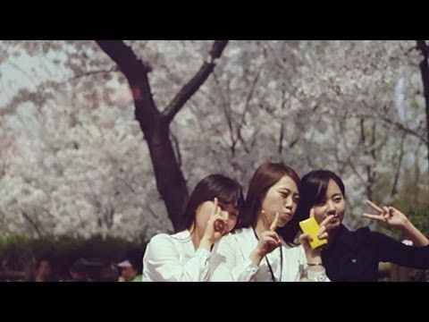 Richard Walters - Blossom II music video feat the lovely city of Seoul and a few shots of the DMZ