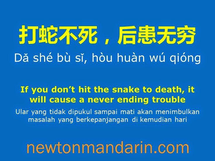 newtonmandarin.com: Small error should be fixed to get rid of a never ...