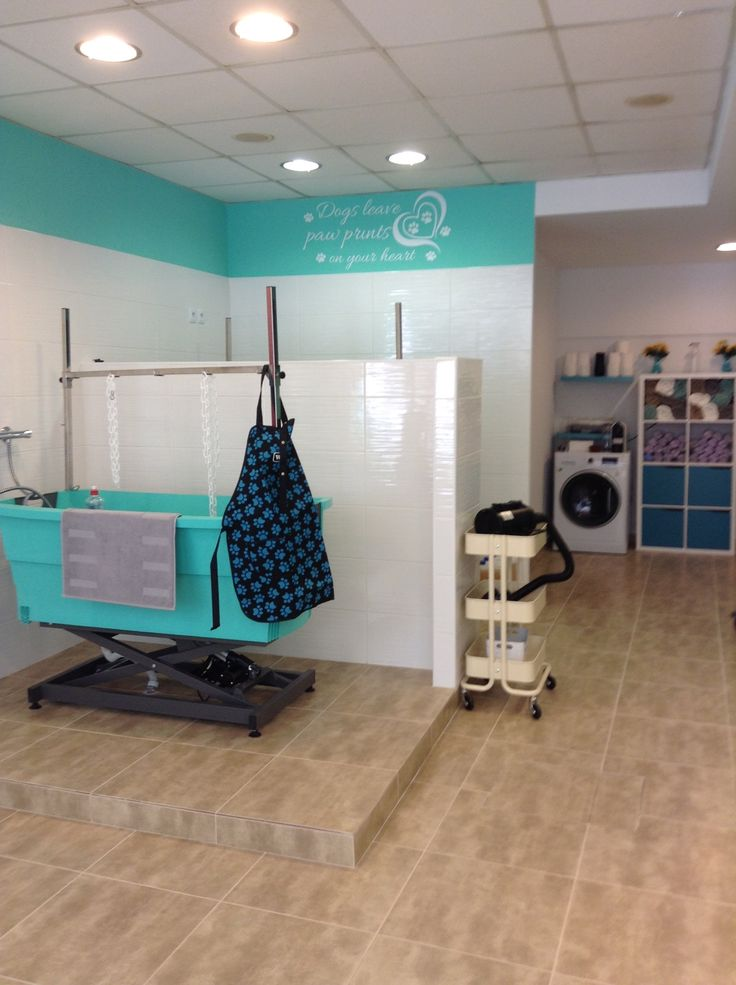 -repinned- Interior pet grooming salon