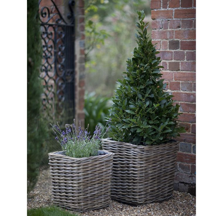 Garden Trading Set of 2 Rattan Planters give a rustic edge to your outdoor area - £105 from Amara.