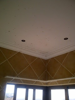 We repaint the ceiling with a specialist mould resistant paint. We can install an extractor fan to get rid of the steam.