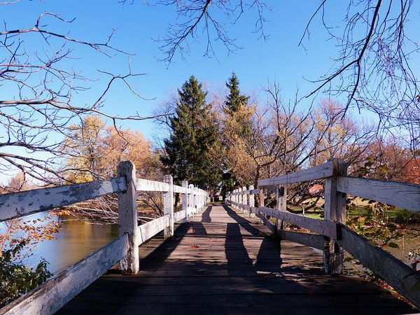 Ellicott Creek Park - Foot Bridge 1 Art Print by Leslie Montgomery.