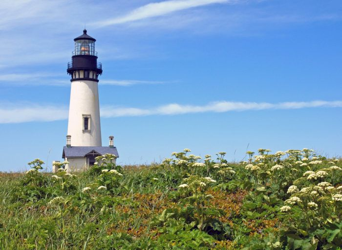 A short walk up to Yaquina Head will lead you to this incredible viewpoint and historic lighthouse. If you come at the right time, you can sign up for a tour of the lighthouse to see it from the inside.