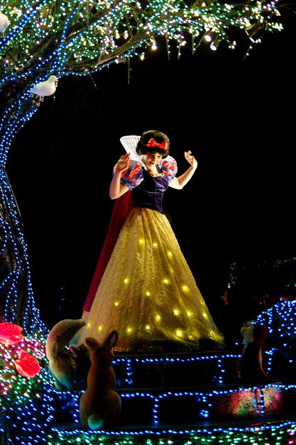 """Disney's Electrical Parade""."