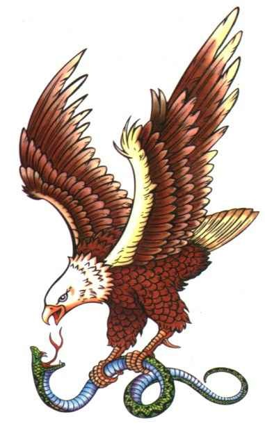 Eagle Flash