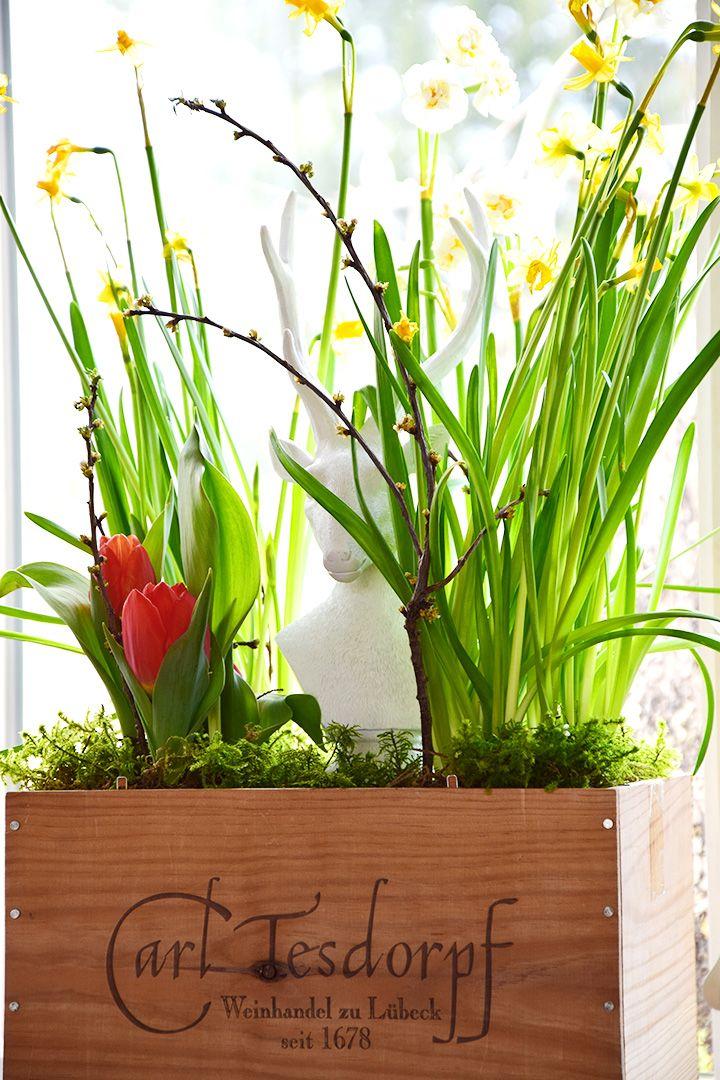Deko wohnzimmertisch frühling  82 besten Deko für den Frühling Bilder auf Pinterest | Dekoration ...