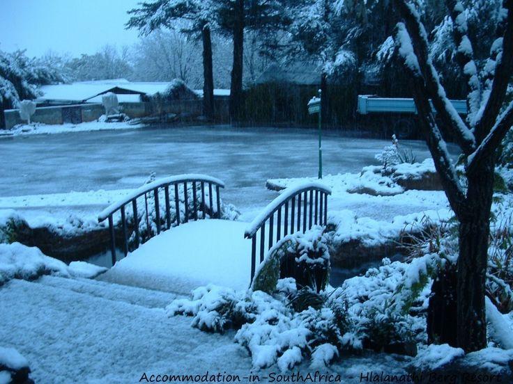 Watch the snow at Hlalanathi. http://www.accommodation-in-southafrica.co.za/KwaZuluNatal/Bergville/Hlalanathi.aspx