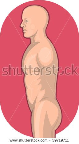 vector illustration of a Male human anatomy standing side view from waist up  #humanbody #retro #illustration
