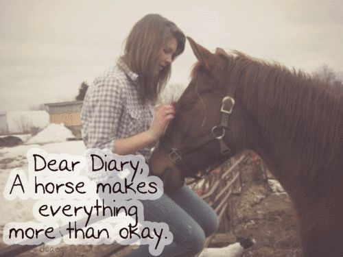 Dear Diary, A Horse Makes Everything More Then Okay. Country Life Horse