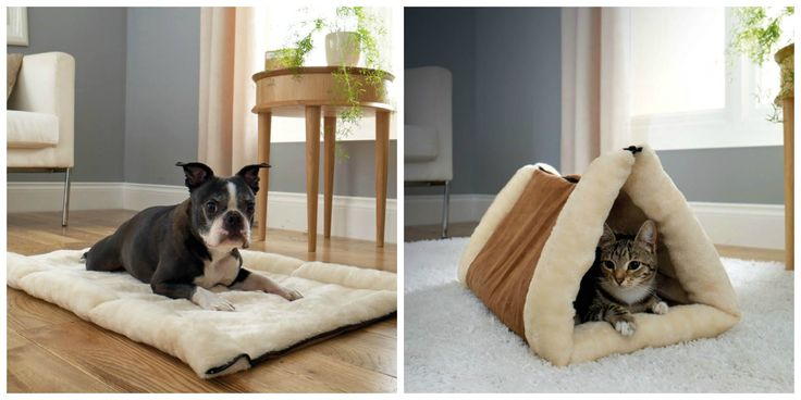 2 In 1 Pet Bed £12  2 in 1 tunnel bed & mat provides a cosy cave for your pet to lounge and play. Features a thermo-reflective core which reflects body heat for a toasty surface and traps hair like a magnet for fur free furniture. Zips from a mat to a bed in seconds. Machine washable. Size when flat L87 x W60cm. 100% polyester.