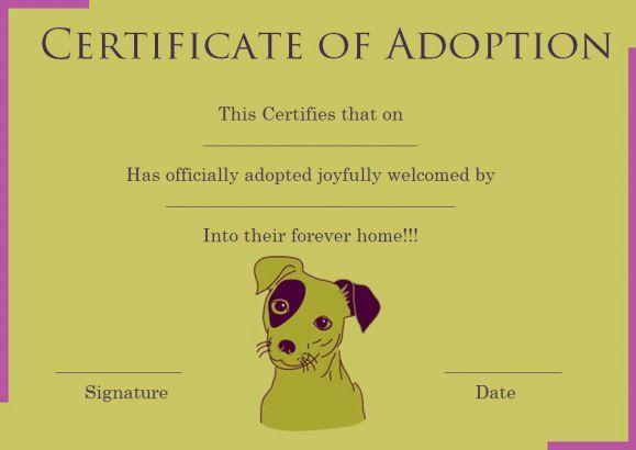 dog adoption certificate template pet adoption certificate