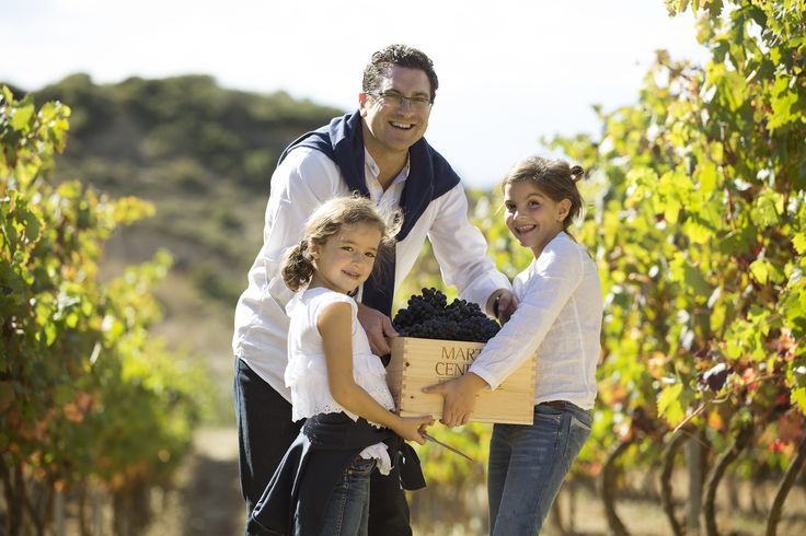 Vendimia en familia en Eguren Ugarte. http://www.enoturismoegurenugarte.com/actividades/vendimia-en-familia/