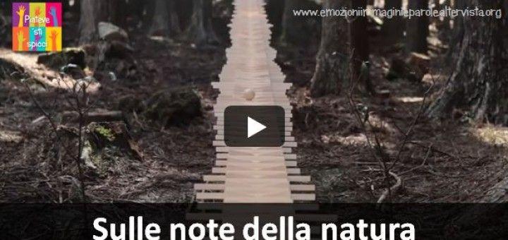 Gradini di legno annunciano le note di una sonata di Bach una pallina ne scandisce le note
