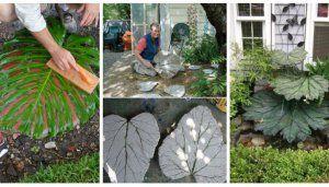 How to make a large leaf birdbath.  DIY!!  Leaf casting fountain  More Concrete Leaf Yard Art Tutorial
