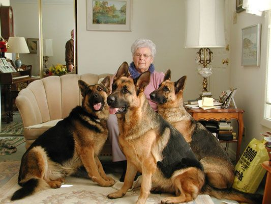 Old people are cool!!  This is Olive and her dogs.