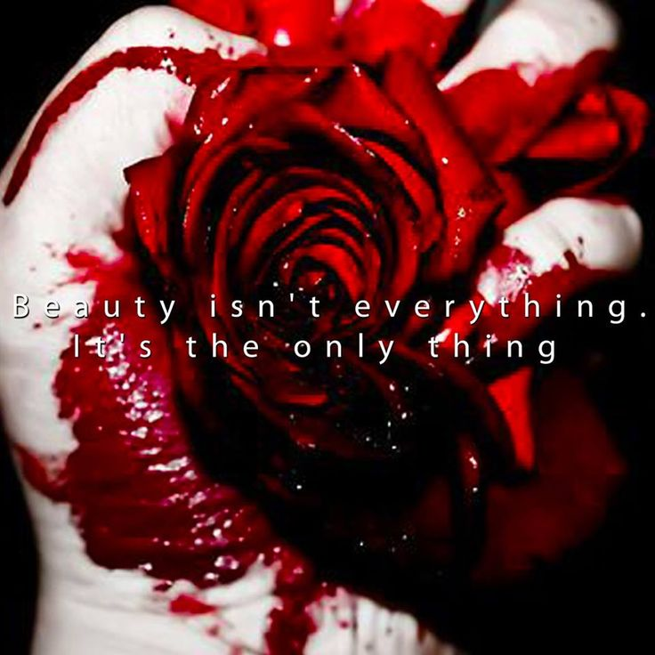 """""""Beauty isn't everything. It's the only thing"""""""