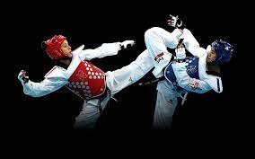 Image result for taekwondo