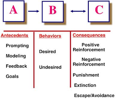 The 25+ best Operant conditioning ideas on Pinterest Bcaba exam - dog trainer sample resume