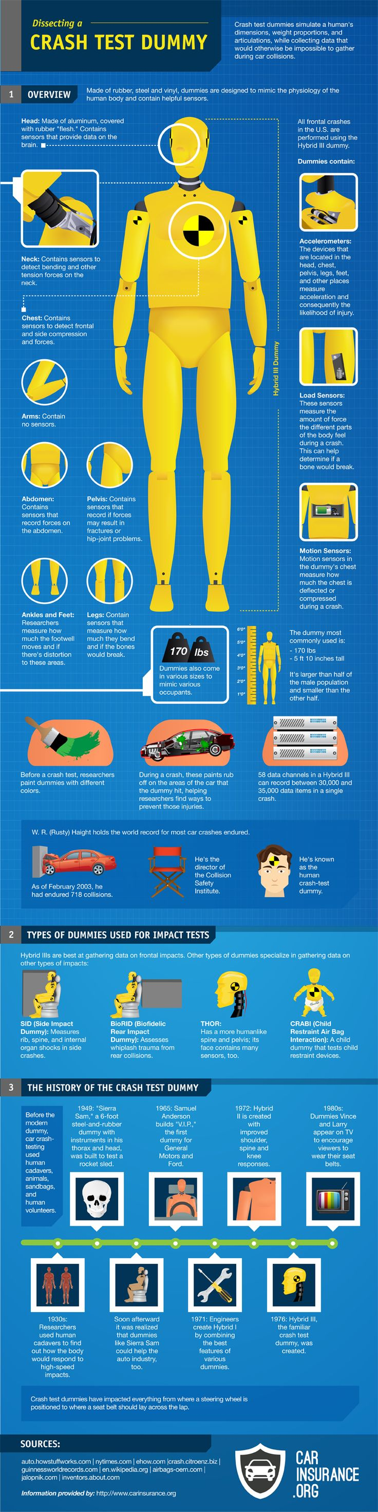 Infographic: Dissecting a Crash Test Dummy