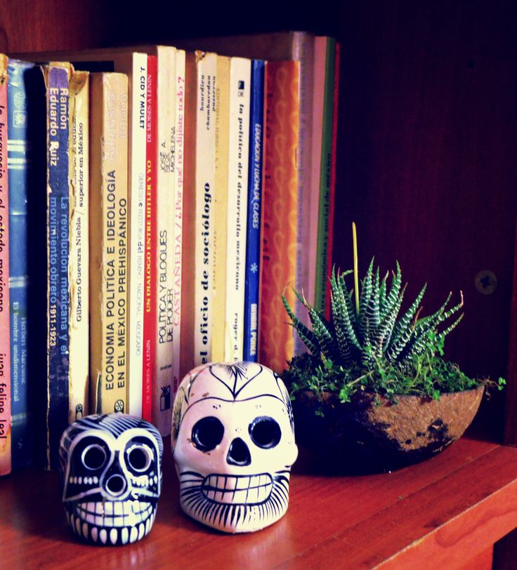I bought the maguey in Jamaica Market.  It is in a half of a coconut shell. The calaveras were purchased in Taxco, Guerrero. México.  #Mexican #EtnoHipster #Room #Decoration #Taxco #Guerrero #Crafts