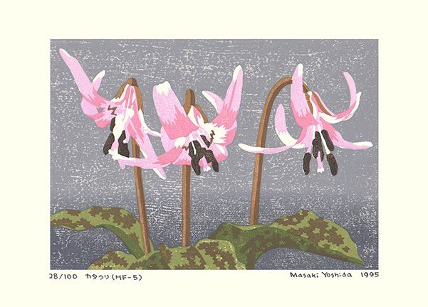 Artist: Masaki Yoshida. Keywords: flower floral modern contemporary style woodblock woodcut print picture hanga japan japanese orient oriental asia asian art readercollection.com trout lily