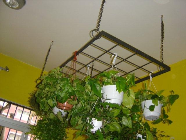 M s de 25 ideas nicas sobre macetas para colgar en - Maceteros colgantes para balcones ...