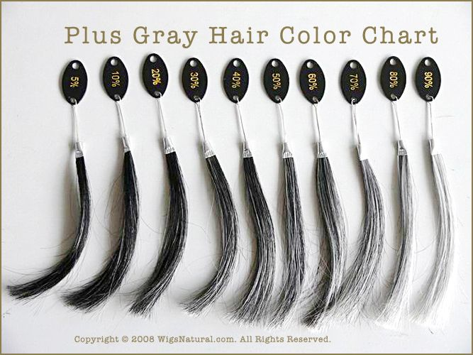 Gray Hair Color Chart Wwwpixsharkcom Images Galleries With