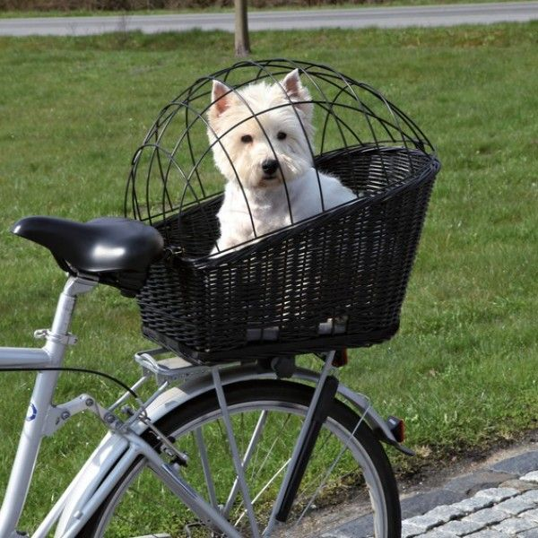 Gallery For > Dog Bike Carrier
