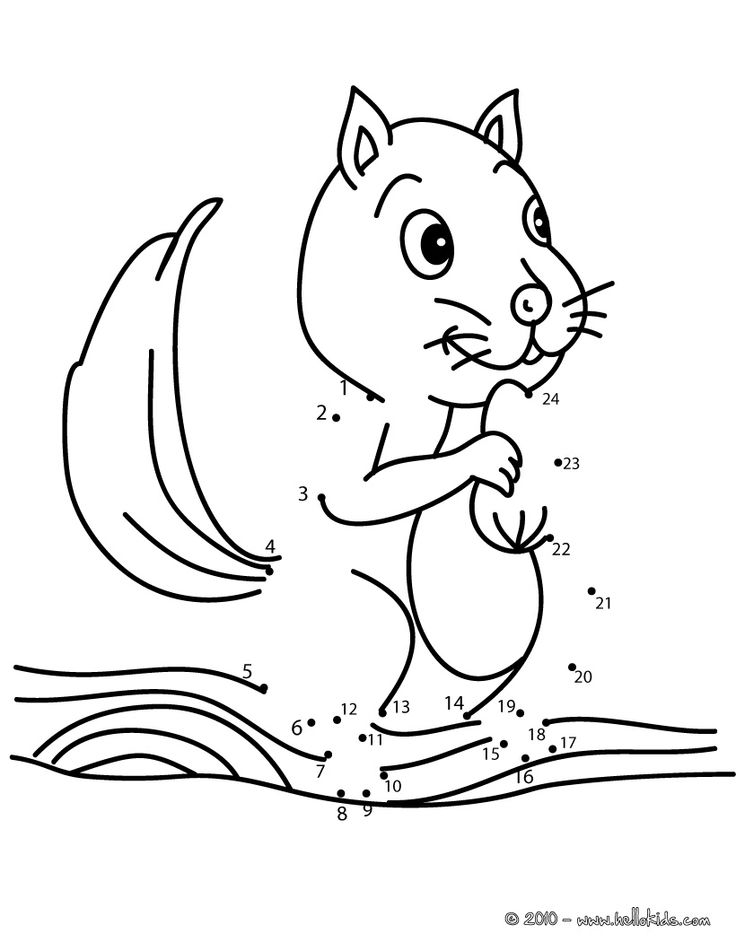 Squirrel dot to dot game printable connect the dots game