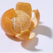 How to Grow a Clementine Tree in Your House   eHow