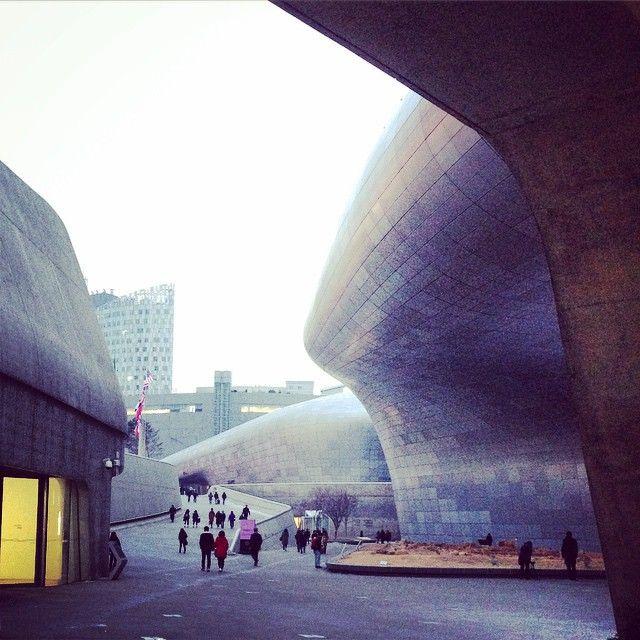 동대문디자인플라자 (DDP) in 서울특별시