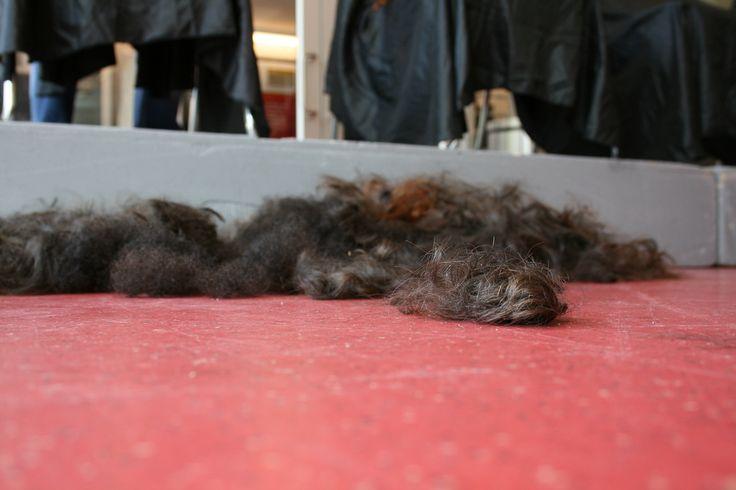 https://flic.kr/p/75UBSh   Cheveux coupés   Des étudiants au B.A.A. se sont fait raser la tête dans le cadre du Défi têtes rasées de Leucan.