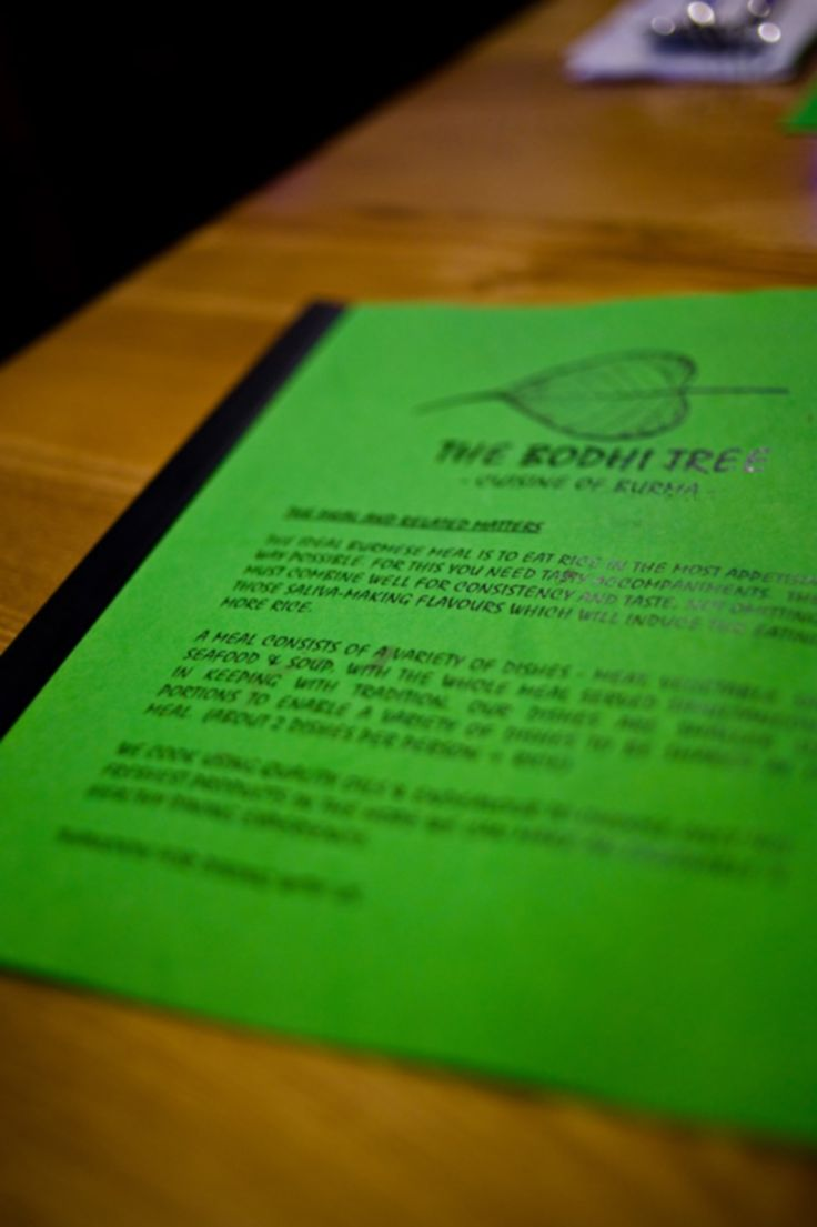 Bodhi Tree (Burmese) Restaurant - fantastic food - been a few times now and loved it every time.