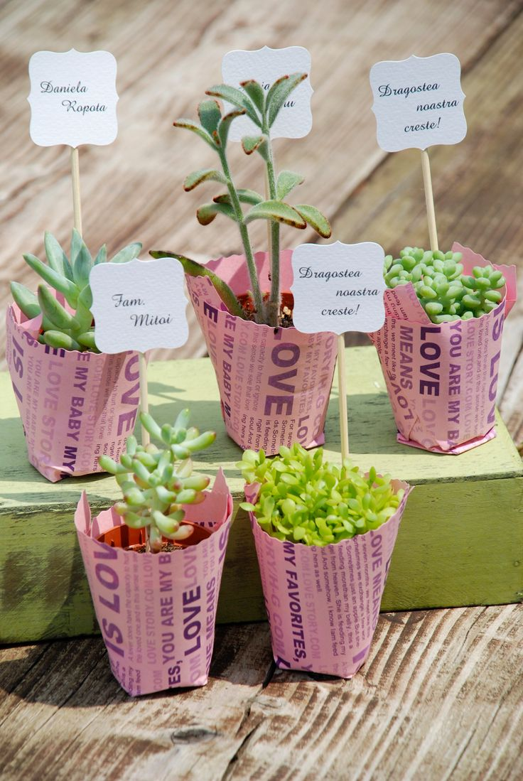 115 best Growing gift favors images on Pinterest | Wedding ...