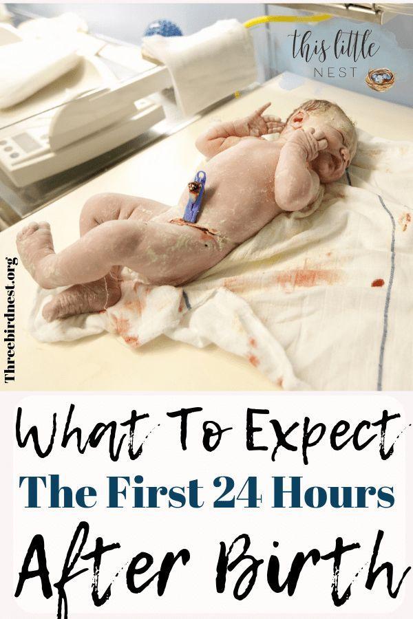 Die ersten 24 Stunden   – Twins