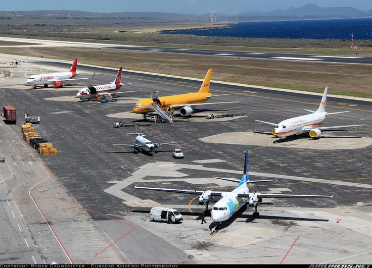 Fokker 50 - Insel Air Aruba   Aviation Photo #2314651   Airliners.net