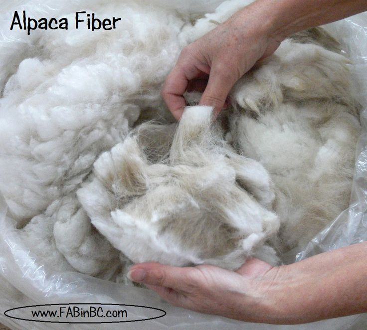 Image result for spin cotton, llama, alpaca and sheep wool