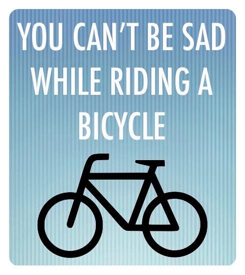 440 Best Posters Images On Pinterest Bike Art Cycling Quotes