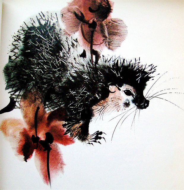 Porcupine from 'Animals we Love' by Mirko Hanak, 1972. Posted on flickr by art.crazed.