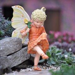 Birdsfoot Trefoil Fairy