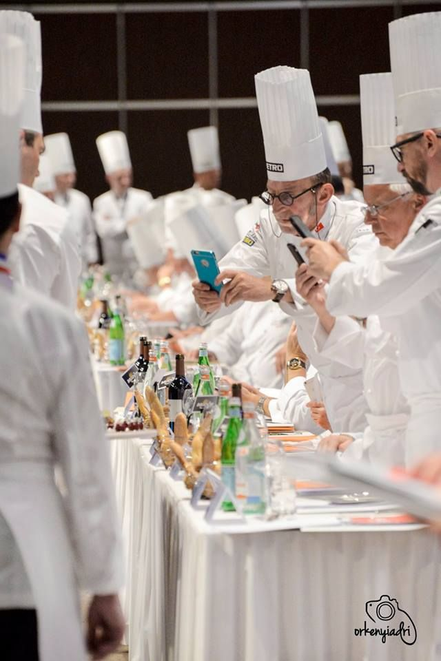 event photography bocuse d'or chef cooking contest gastronomy receipt european final 2016